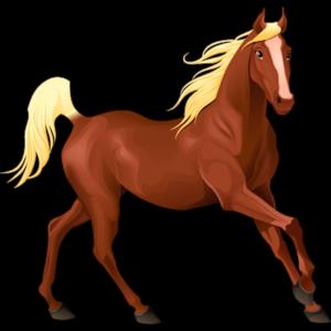 1 Horse Graphic